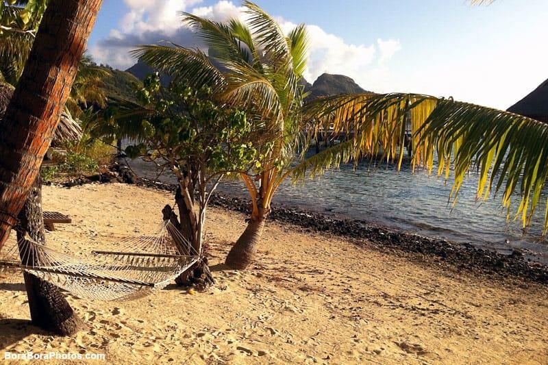 Relax on a Bora Bora Hammock | boraboraphotos.com